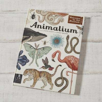 'Animalium' Book