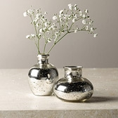 Silver Glass Vases - Set of 2
