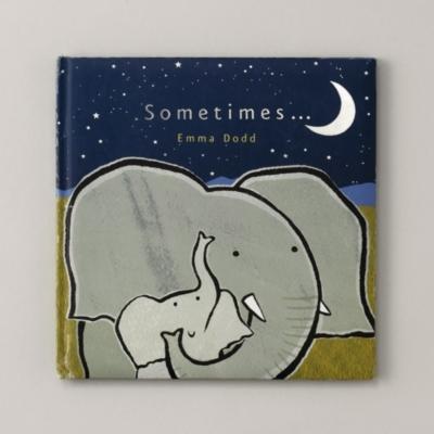 Sometimes... Book by Emma Dodd