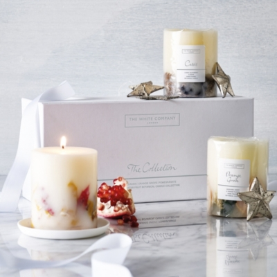 Winter Fruits Botanical Candle Collection