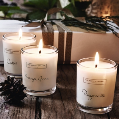 Winter Fruits Candle Collection - Set of 3