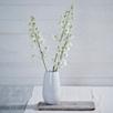 Chartwell Vase