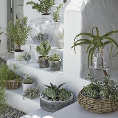 Earthenware Large Planter