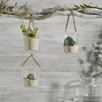 Hanging Glass Planter s/3