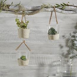 Hanging Glass Planter s/3