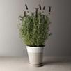 Ceramic Planter - Large