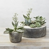 Earthenware Small Planter