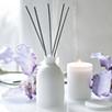 Iris Diffuser