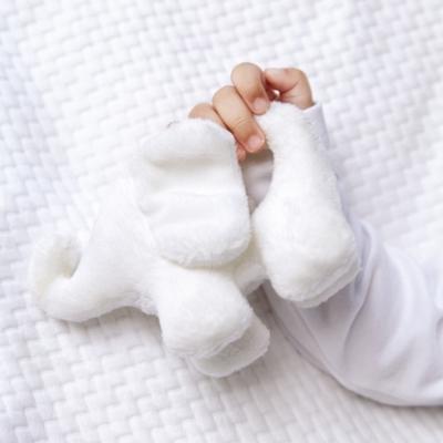 Indy Elephant Rattle