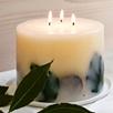 Lime & Bay Large Botanical Pillar Candle