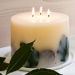 Lime & Bay Large Botanical Pillar Candle
