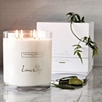 Lime & Bay Indulgence Candle