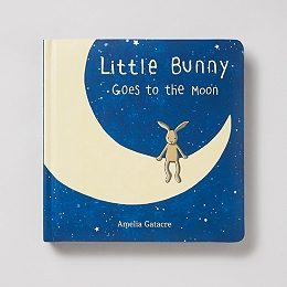 Little Bunny Goes To The Moon Book by Amelia Gatacre