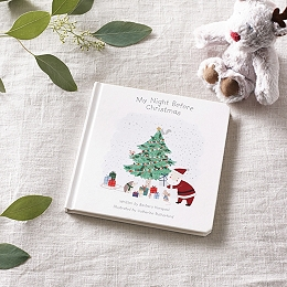 My Night Before Christmas Book By Barbara Horspool