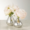 Mercury Vase- Set of 2