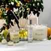Orange Grove Tealights- Set of 12
