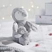 Snowy Penguin Family