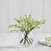Rimini Vase Small