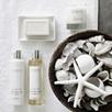 Seychelles Soap