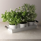 Enamelware Herb Pots with Tray