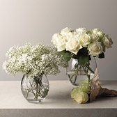 Buy Rimini Vases from The White Company