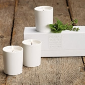 Buy Herbal Votive Candle Set from The White Company