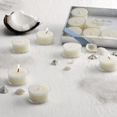 Buy Seychelles Tealights - Set of 12 from The White Company