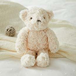 Teddy the Bear Small Toy