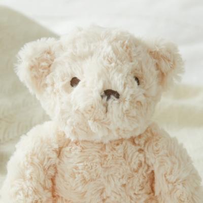 Teddy the Bear Small Toy