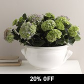 Buy Ceramic Planter from The White Company