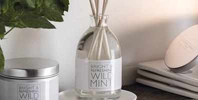 Diffuser refills