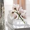 Verona Vase