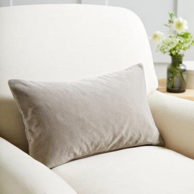 Velvet Scatter Cushion  - 2 Colours