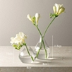 Glass Bud Vases - Set of 2