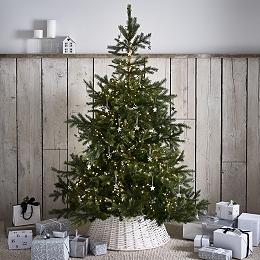 Spruce Christmas Tree - 6ft