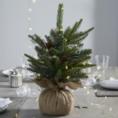 Mini Fir Christmas Tree