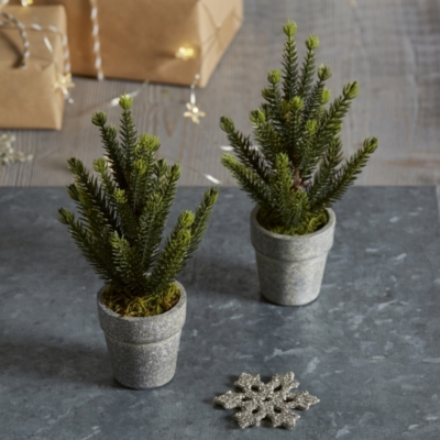 Mini Potted Spruce Christmas Tree - Set of 2