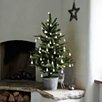 3ft Potted Spruce Christmas Tree