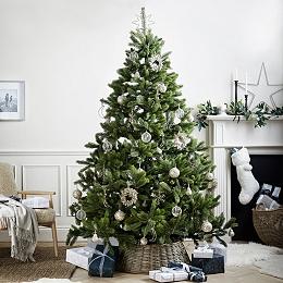 Symons Nordmann Fir Christmas Tree - 7.5ft