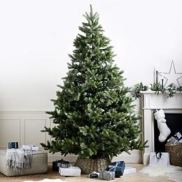 Symons Nordmann Christmas Tree – 9ft