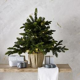 Pre-Lit Porch Christmas Tree – 3ft