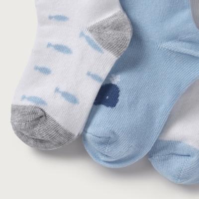 Whale Socks - Pack of 3