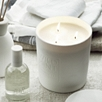 Wild Mint Large Candle