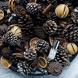 Winter Pot Pourri