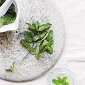 Buy Wild Mint from The White Company