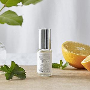 Geranium Leaf Fragrance Oil