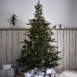 Contemporary Christmas Trees Uk.Luxury Christmas Trees The White Company Uk