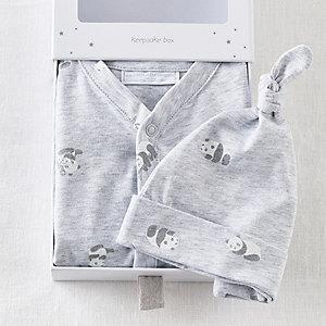 Unisex Panda Boxed Baby Gift Set