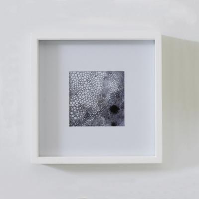 "Fine Wood Photo Frame 5x5"" - White"